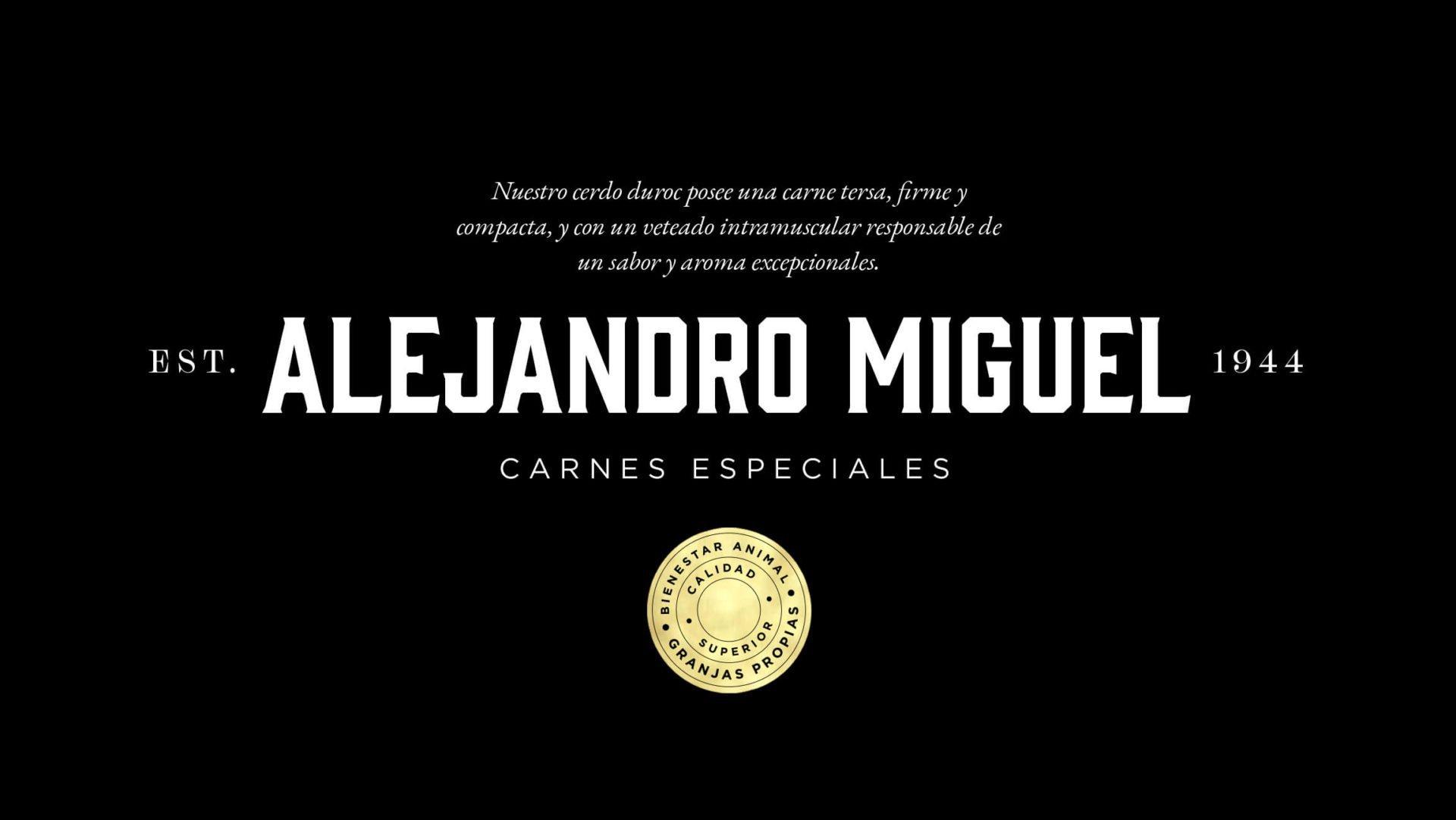 diseño-logotipo-horizontal-alejandro-miguel